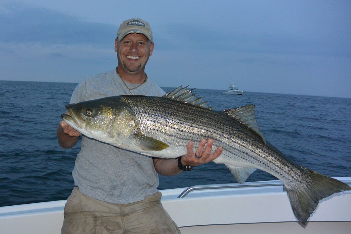 Capt. Brian with a Striper from 2016