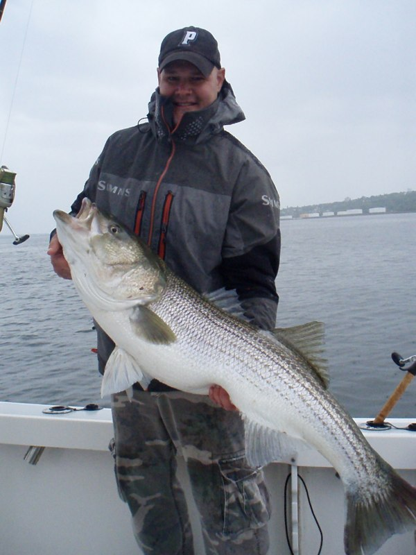 AJ with a large 37.5 lb Striper on a lovely Bristol Morning