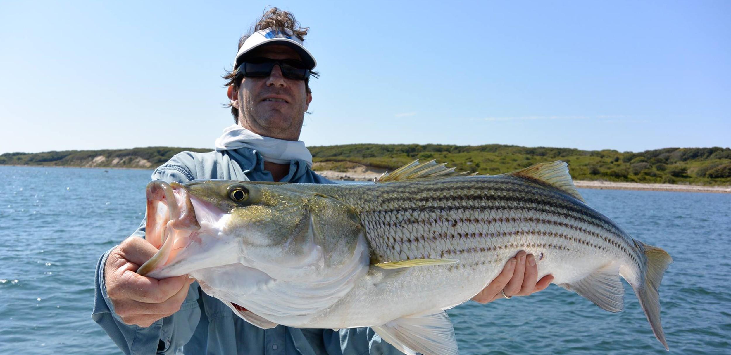 Big Block Island Bass
